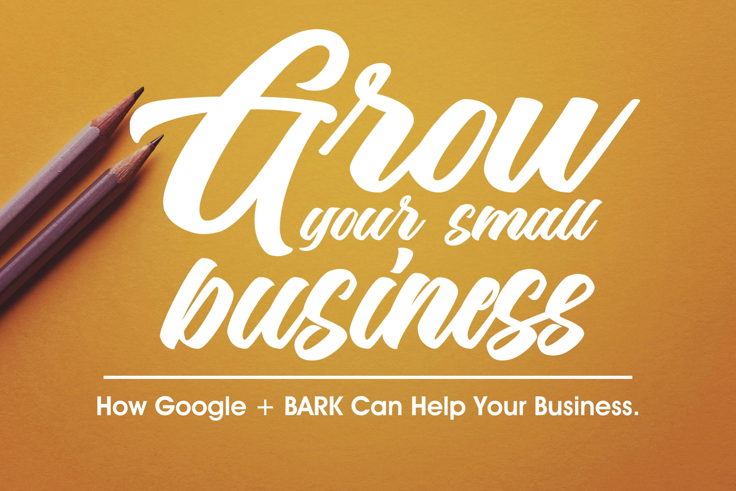 How Do Google Ads Help Small Business Grow?